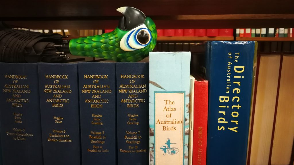 Umbrella handle in the style of Mary Poppins (green parrot head) resting on books on a shelf. The books are all bird directories.