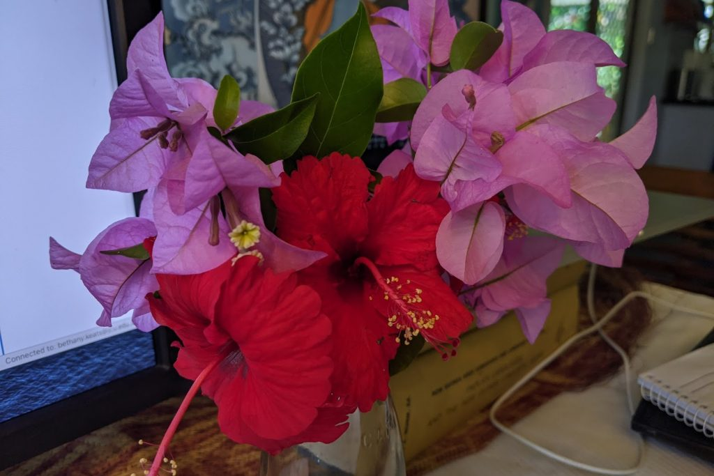 small posy of red hibiscus and purply-pink bougainvillea