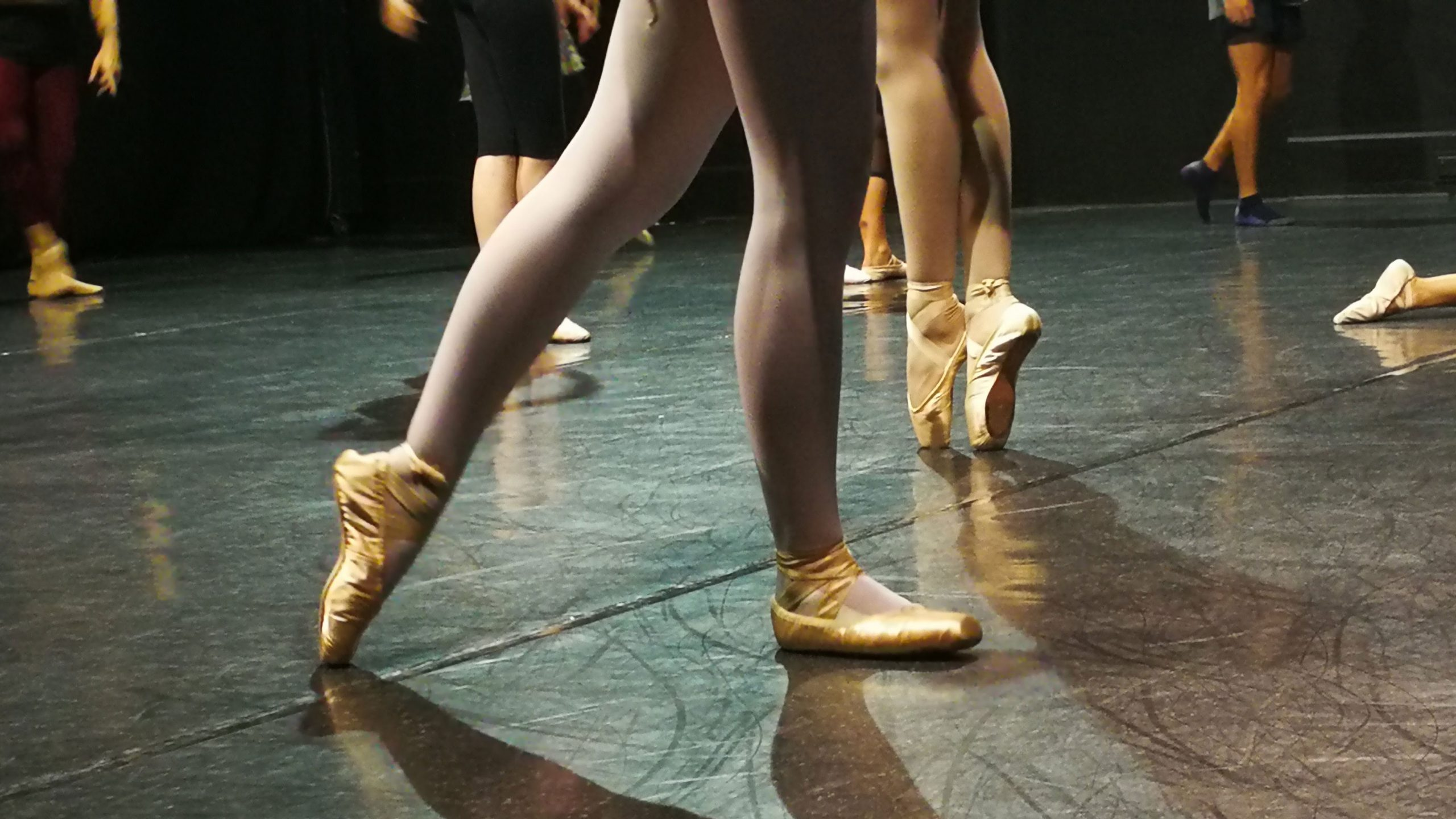 legs of dancers in pointe, flat, and demi-pointe shoes