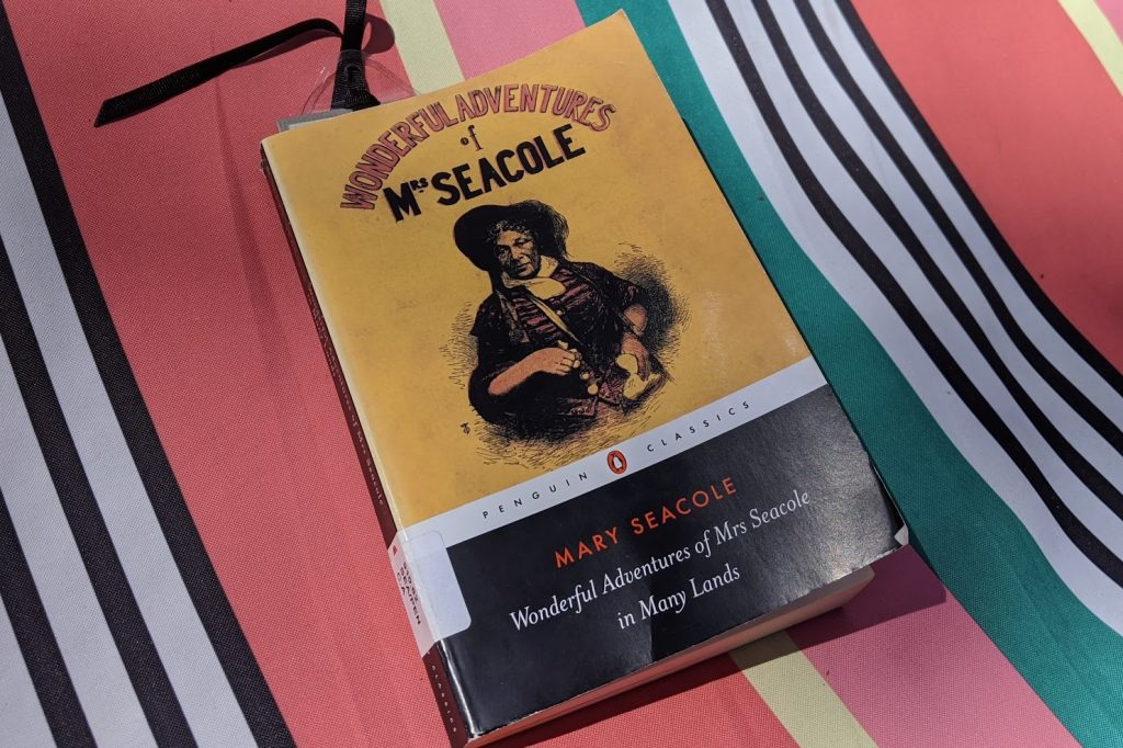 """Copy of the book """"Wonderful Adventures of Mrs Seacole in Many Lands"""" on a colourful background"""